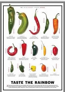 Pepper Chart Pepper Varieties Stuffed Peppers Stuffed Peppers