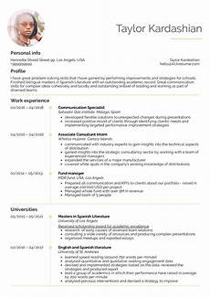Company Resume Examples Resume Examples By Real People Business Strategy
