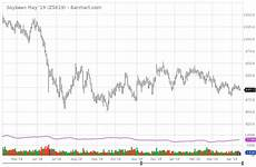 Soybean Commodity Price Chart Soybean Prices On The Of The Us China Trade Deal