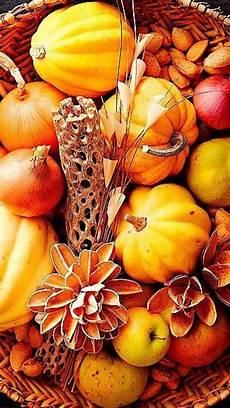 pumpkin iphone wallpaper iphone wallpaper thanksgiving tjn fall harvest