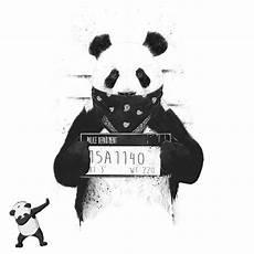 panda supreme wallpaper freetoedit panda dab image by hejcegnoo