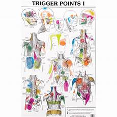 Referred Chart Trigger Points Trigger Points Crystal Healing Chart