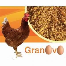 galline da cortile progeo granovo granaglia naturale per galline ovaiole da