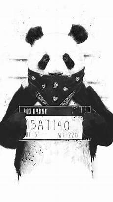 panda supreme wallpaper gangster panda panda fondos arte de panda y producci 243 n