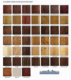 Natural Wood Colors Chart Impressive Wood Finish Colors 5 Cabinet Wood Stain Color