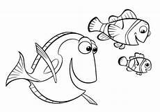fische 8 ausmalbilder malvorlagen
