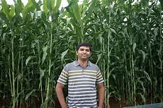 Crop Pricing Crop Pricing To Weather Info This Hyd Man S Mobile App Is