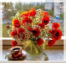 flower wallpaper with morning beautiful morning flowers pictures photos and images for