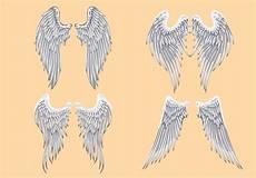 Drawing Of Angel Wings Vector Heraldic Angel Wings Download Free Vectors