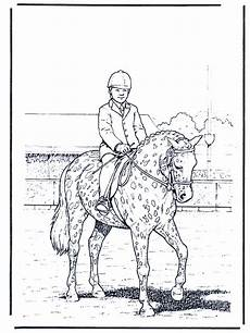 Ausmalbilder Pferde Dressur Dressur Ausmalbilder Pferde