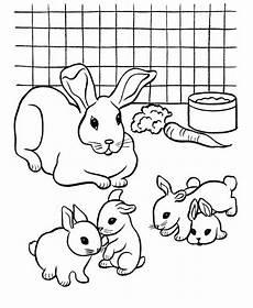 ausmalbilder kaninchen 04 malvorlagen f 252 r kinder