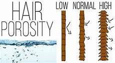 Hair Porosity Chart Hair Porosity The Definitive Guide