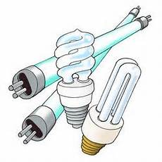 Light Bulb Disposal San Francisco Where To Dispose Of Cfl Light Bulbs Decoratingspecial Com