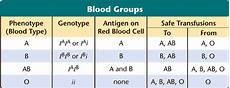 Genotype Chart For Blood Types Genotype And Blood Group Learn Never To Forget The