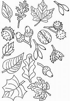 Malvorlagen Herbst Kindergarten Malvorlage Herbst Herbst Im Storchennest Malvorlagen