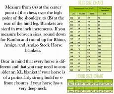 European Horse Blanket Size Chart Amigo Pony 1200d Medium Turnout Blanket In Purple And