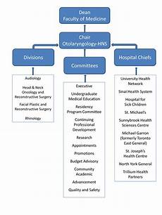 What Is The Organizational Chart Of A Company Organizational Structure Department Of Otolaryngology
