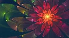 flower abstract 4k wallpaper fractal flower 4k abstract wallpaper