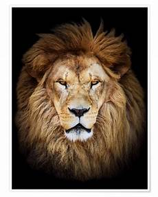 King Of The Jungle Designs King Of The Jungle Portrait Posters And Prints
