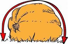 Pumpkin Weight Chart Giant Pumpkin Weight Estimation Calculator Giant Pumpkins Nz