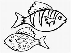 Fische Zeichnen Malvorlagen Colour Drawing Free Wallpaper March 2014