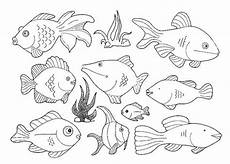 Fische Malvorlagen Zum Ausdrucken Comic Ausmalbilder Fische Gratis Malvor