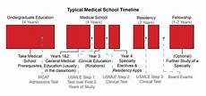 How Many Years Of School To Become A Dentist Medical School Timeline Med School Timeline Medical