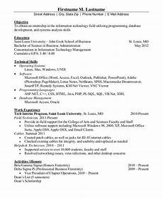 It Resumes Templates It Resume Format Template 11 Free Word Pdf Format