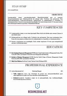 Professional Resume Templates For Word Word Resume Templates 2016