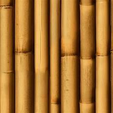 Bamboo Texture Bamboo Texture Seamless 12267