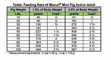 Piglet Weight Feeding Your Mini Pig Recommended Healthy Diet Charming