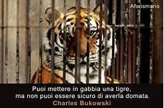 tigre in gabbia puoi mettere in gabbia una tigre ma non puoi essere