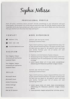 Examples Of Resume Layouts Professional Resume Template Resume Template