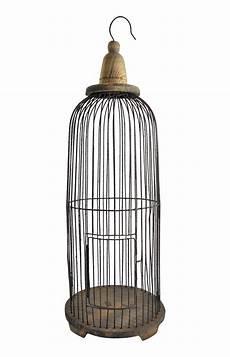 decorative wire hanging birdcage chairish