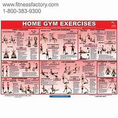 Workout Chart For Gym Pdf 20 Of The Most Common Home Gym Exercises Laminated 24 Quot X 36 Quot