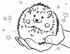 baby hedgehog smiling colouring pages bulk color with