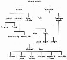 Business Activities Chart Classification Of Business Activities With Their