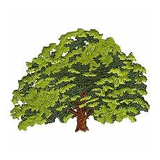 oak tree embroidery design by thread images