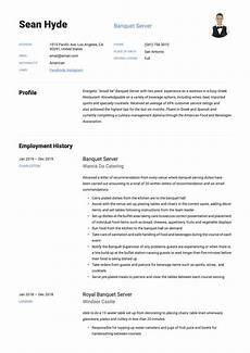 Banquet Resume Sample Banquet Server Resume Amp Writing Guide 12 Free Examples