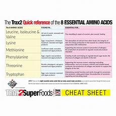 Amino Acid Benefits Chart Amino Acids Chart