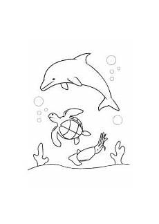 meeresschildkr 246 te delfin malvorlagen unterwasserwelt