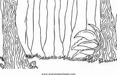 wald urwald 0 gratis malvorlage in diverse malvorlagen