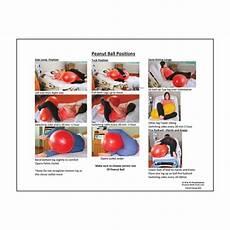 Peanut Ball Chart Health Education Products Amp Materials Health Edco Us