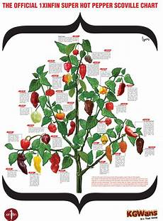 Pepper Chart 17 Best Images About Peppers On Pinterest Sauce