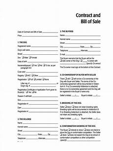 How To Write A Bill Of Sale For A Car Free 5 Sample Dog Bill Of Sale Forms In Pdf