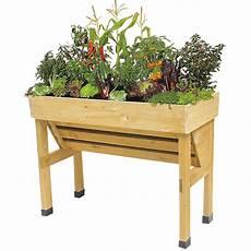 garden planter displaying plants no background
