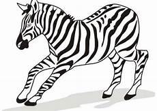 Zebra Template Printable 40 Zebra Templates Free Psd Vector Eps Png Format
