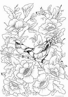 bird printable coloring page from favoreads