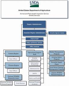 Professional Services Org Chart Usda Aphis Organization Chart