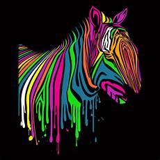 Colorful Zebra Design Neon Zebra By Fancy Mollykatemartin